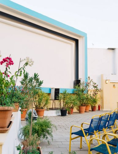 chairs and plants and movie screen