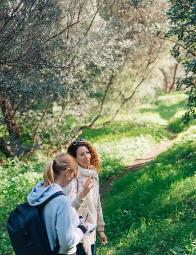 two women talking under olive trees in Philopappou Hill Athens