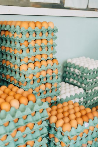 cartons of eggs
